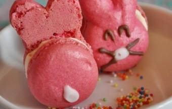 macarons lapins 5
